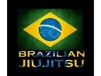 HOME STUDY BJJ BRAZILIAN JIU JITSU DVDS gracie barra gi kimono tatami ufc boxing