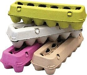 11 egg cartons - give away Two Wells Mallala Area Preview
