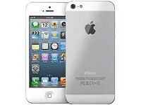 Apple iPhone 5, Silver 16GB -02/GiffGaff - Buy In Confidence From An Apple Retailer!
