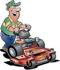 M.W.T MOWING SERVICE Coomera Gold Coast North Preview