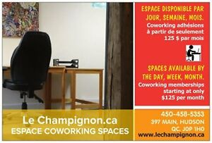 ESPACE COWORKING SPACE West Island Greater Montréal image 4