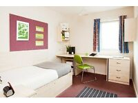 Single large en-suite student room URGENT