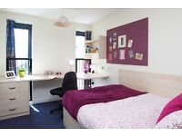 Ensuite room available in Edinburgh City Centre