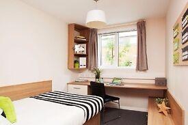 Premium En-suite Room Near Tottenham Hale Station