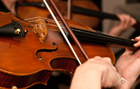 Violin Lessons with Michael DuFault at Ardens Music