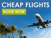 Let us fly you around world for cheap
