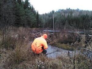 188 Acres Hunting property for sale chemin Rang A otter Lake,QC Gatineau Ottawa / Gatineau Area image 3