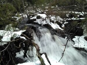 188 Acres Hunting property for sale chemin Rang A otter Lake,QC Gatineau Ottawa / Gatineau Area image 5