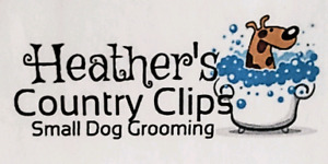 Heather's Country Clips ~ small dog grooming