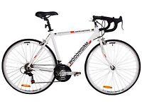 Woodworm White Lighting bike