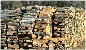Quality Dry Firewood (Pickup & Delivery Available)