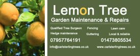 Lemon Tree Garden Maintenance. All aspects of garden works and tree works.