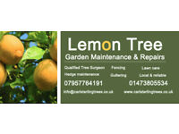 Lemon Tree Garden Maintenance. All aspects of garden works and tree works.