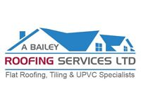 Bailey roofing services