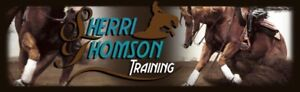 HORSE TRAINING / RIDING LESSONS in Princeton, BC