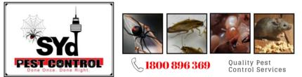 No1 Pest control Solutions SYd Pest Control .