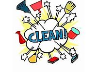 Home cleaning and Ironing Service