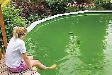 Pool problems? Green algae? Water not clear?