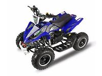 Mini Monster Quad (50CC)