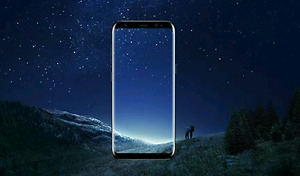 Samsung Galaxy S8 plus.
