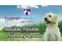 Dog lovers wanted! Dog walking Vacancies Available with Furever Friends - Apply now!