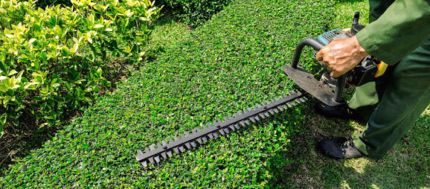 Property management landscaping maintenance, gardening, mowing.