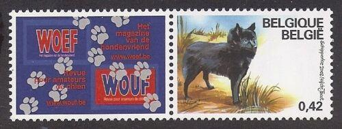 Dog Art Full Body Study Postage Stamp SCHIPPERKE Belgium 2002  2 x MNH