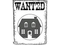 1 bed house or flat needed asap!!!!!