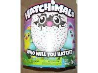 Hatchimal Pengualas Teal