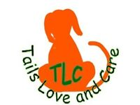 Tails Love and Care (TLC) home dog boarding.