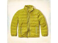 Hollister Mens Jacket size M & L £50 OFF