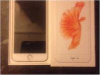 iPhone 6 S Plus Rose Gold
