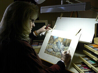 Roby Baer's Fine Art And Prints