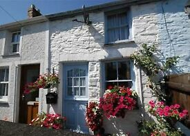 Small cosy cottage to let