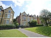 1 bed self contained flat in beautiful Newsham Park ++No fees for tenents++