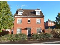 Double room available in large professional house ref ML37ss-5