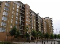 Large parking space for rent near east india canary wharf in secured virginia quay development