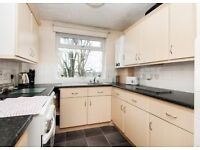 WANTED 1 BEDROOM FLAT OR HOUSESHARE