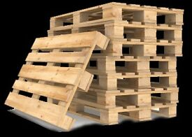 FREE double wooden pallets