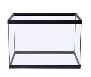 Fish tanks for sale must go