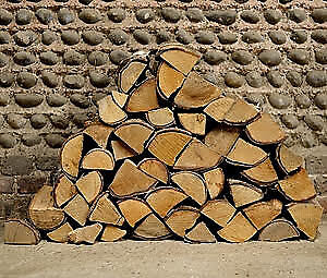 "WANTED;   cheap 16"" long firewood"