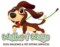 Dog Walker / Pet Sitter/ House Sitter (Montreal and West Island)