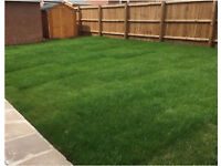 Gardening, Landscaping, Fencing, Hedge cutting, Lawn mowing,