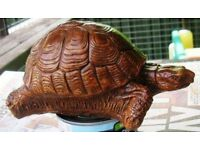 CONCRETE GARDEN TORTOISES FOR SALE