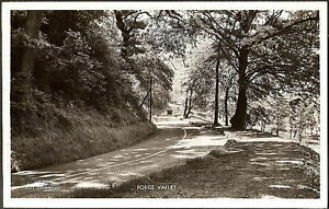REAL PHOTO VIEW OF FORGE VALLEY NEAR SCARBOROUGH 1950s?