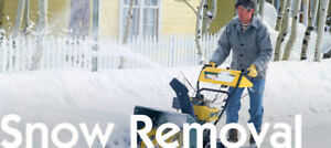 Looking to rent/buy $ a heavy duty snow blower for the season.