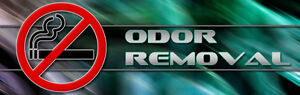 We permanently remove odors and neutralize dangerous mold