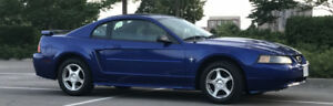 Midnight Blue 2003 mustang