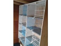Widowhood pigeon nest boxes for sale.