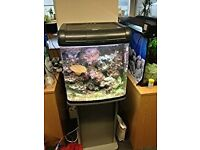 RIVER REEF AQUARIUM 48L